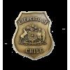 PLACA EJERCITO DE CHILE PARA PORTA TIM